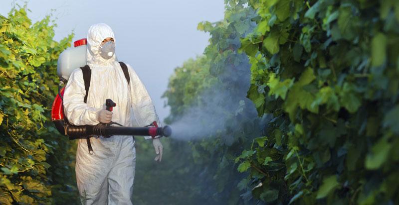 eko-pesticidi21.jpg